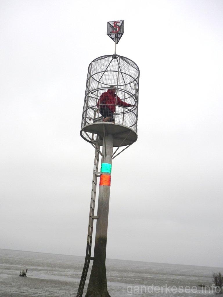 neuwerk-2009-06