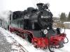 rugen-gohren-2010-18